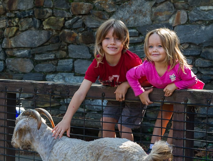 Two children petting a barnyard animal