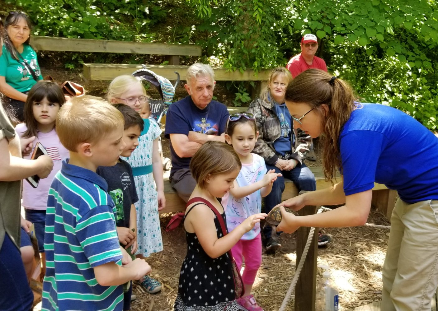 Nature Center staff show a turtle to children during an Animal Education program.