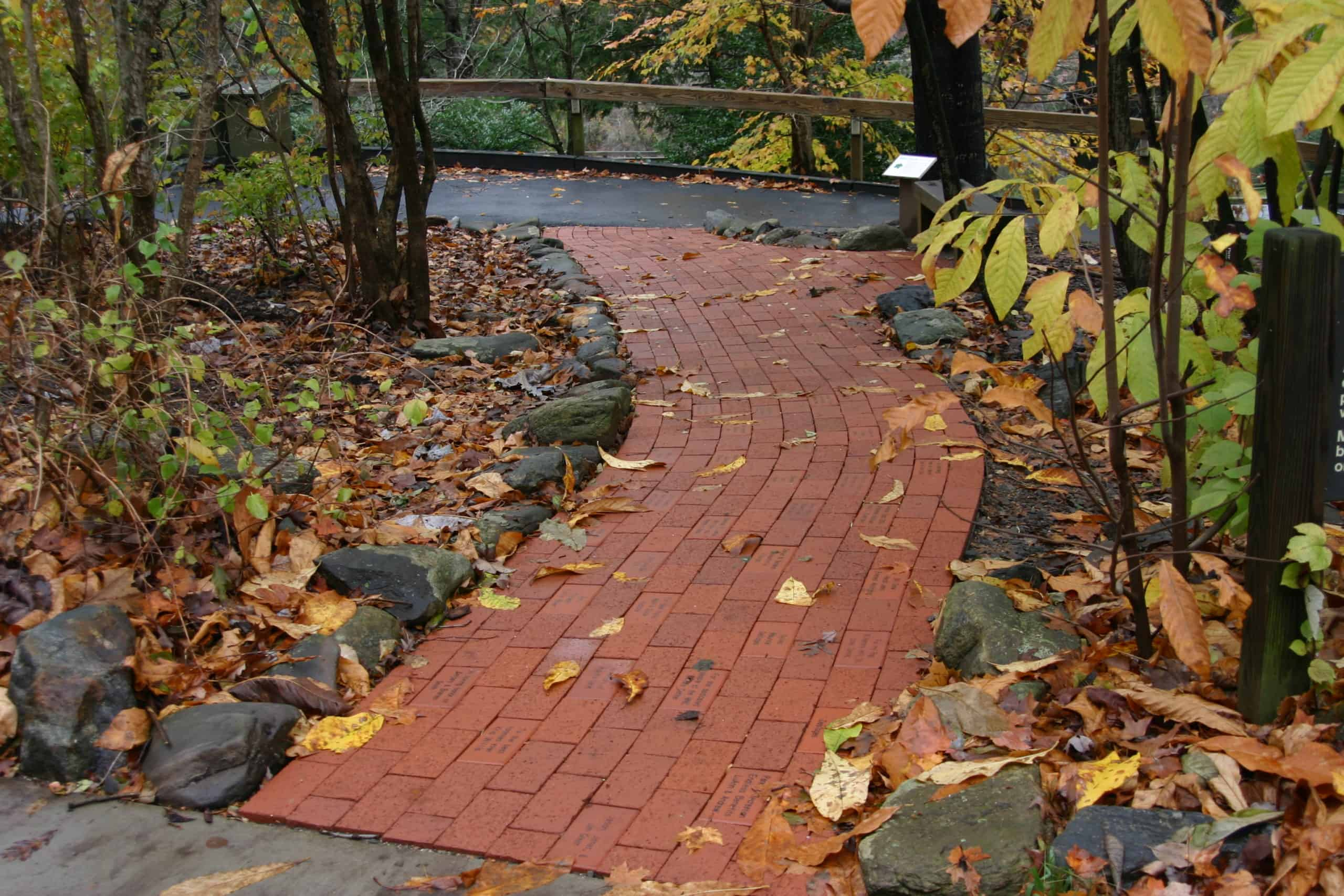 A brick pathway at the Nature Center.